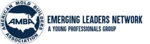 AMBA-Emerging-Leaders-Logo